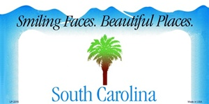South Carolina Blank License Plate